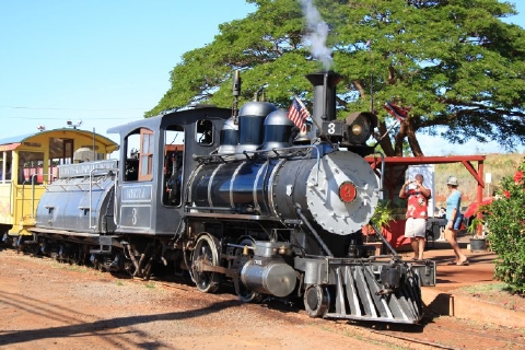 maui inclusive sugar cane train